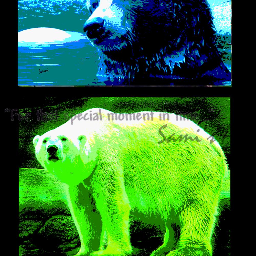 Bears lions lqsukv
