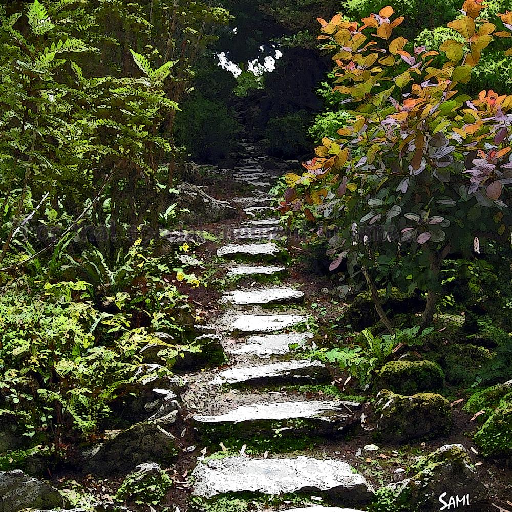 Steps 8017 wf4swu