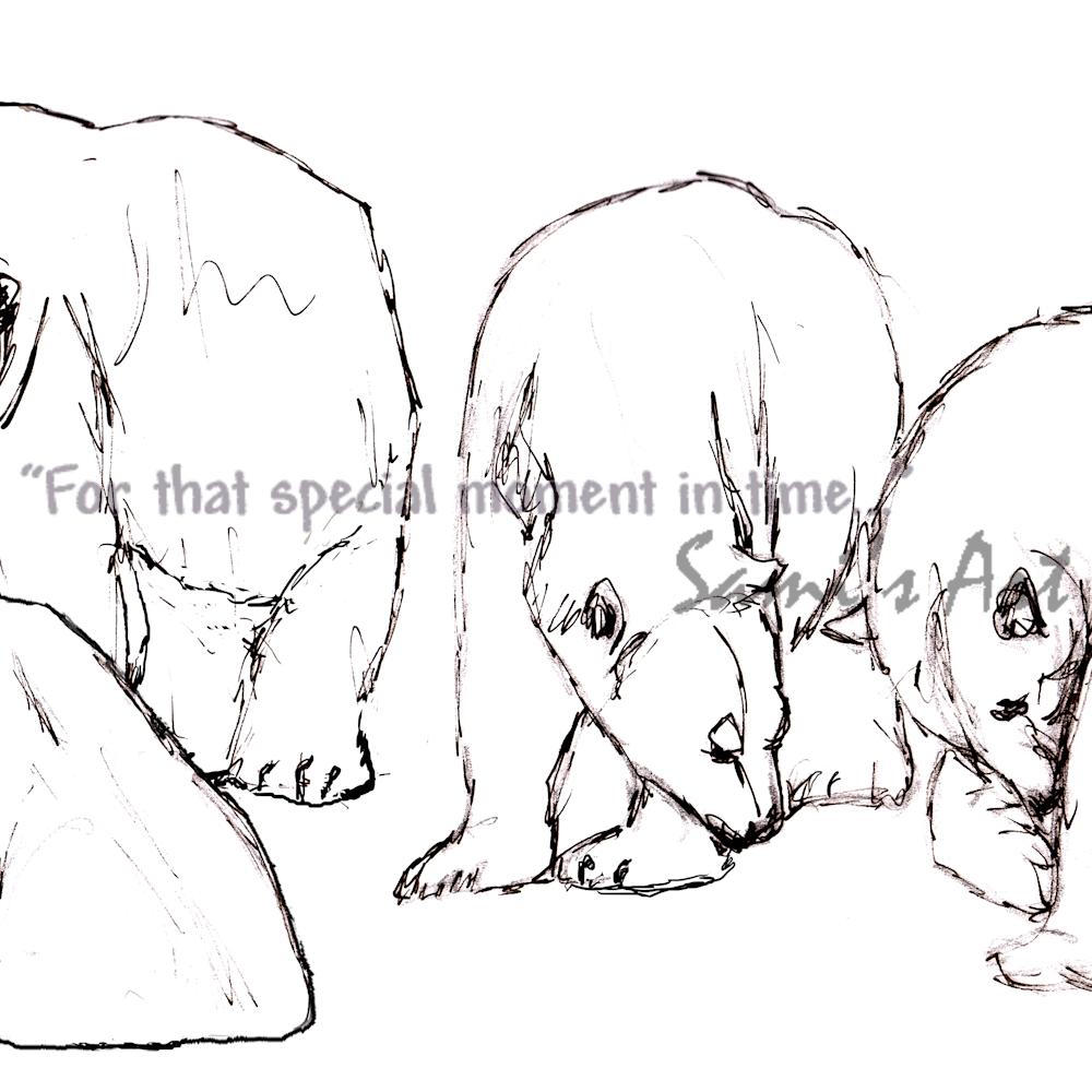 Polar bear sketchs rebyrd