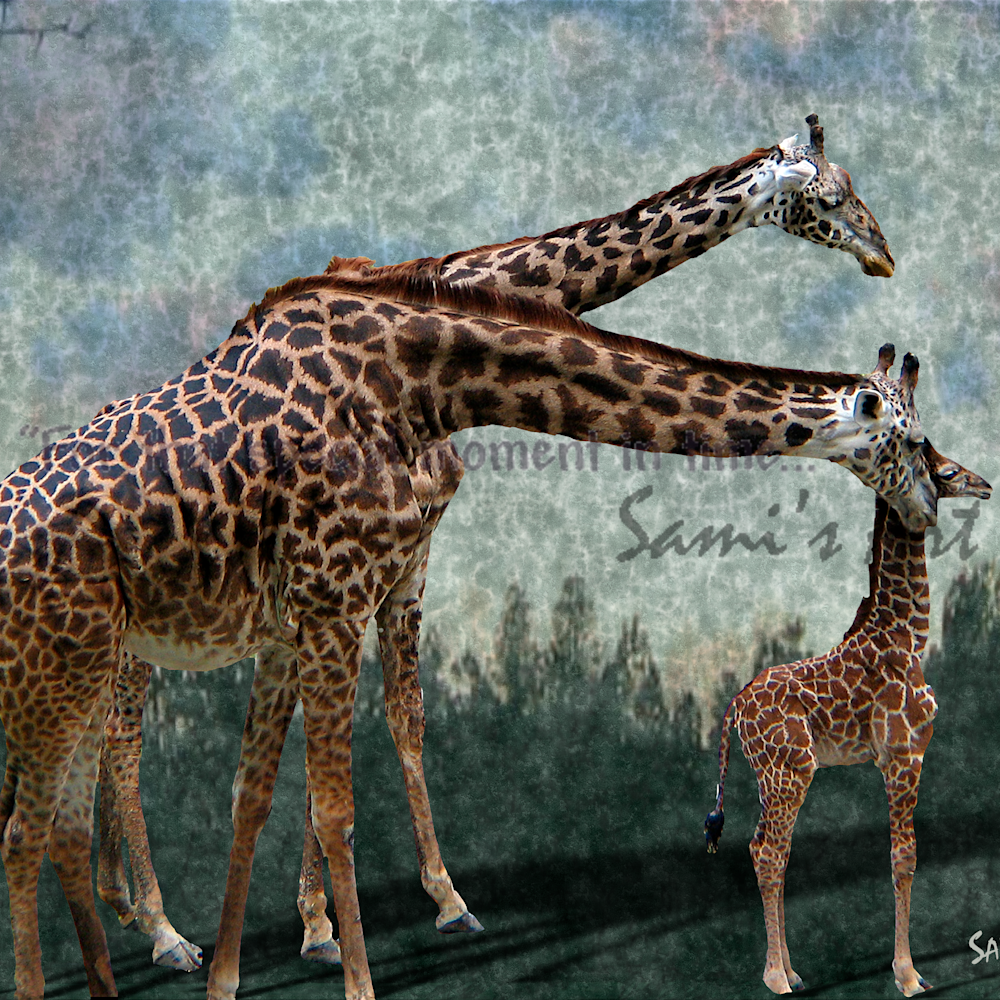 Giraffefamily taqgvf