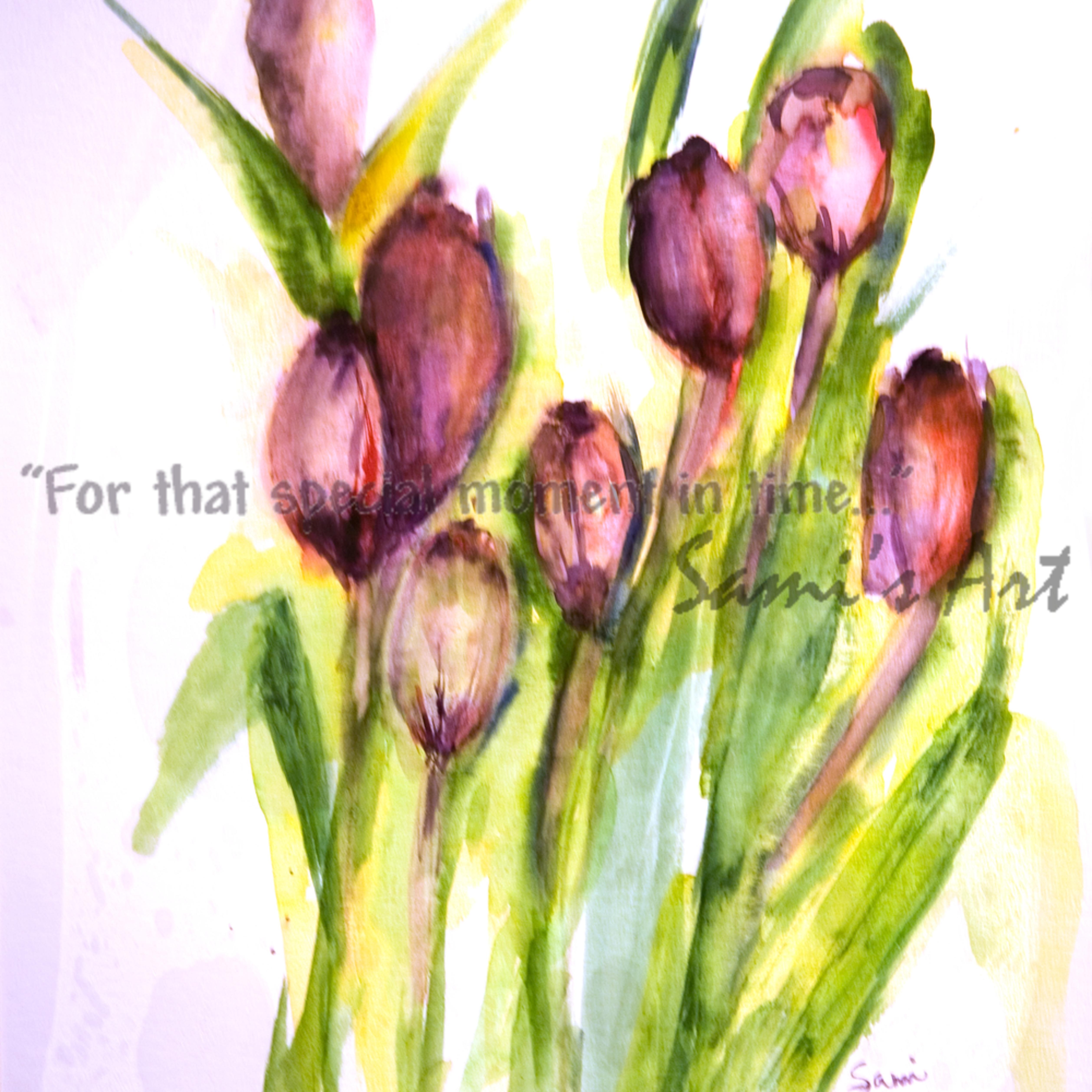 Tulips9829 opllns