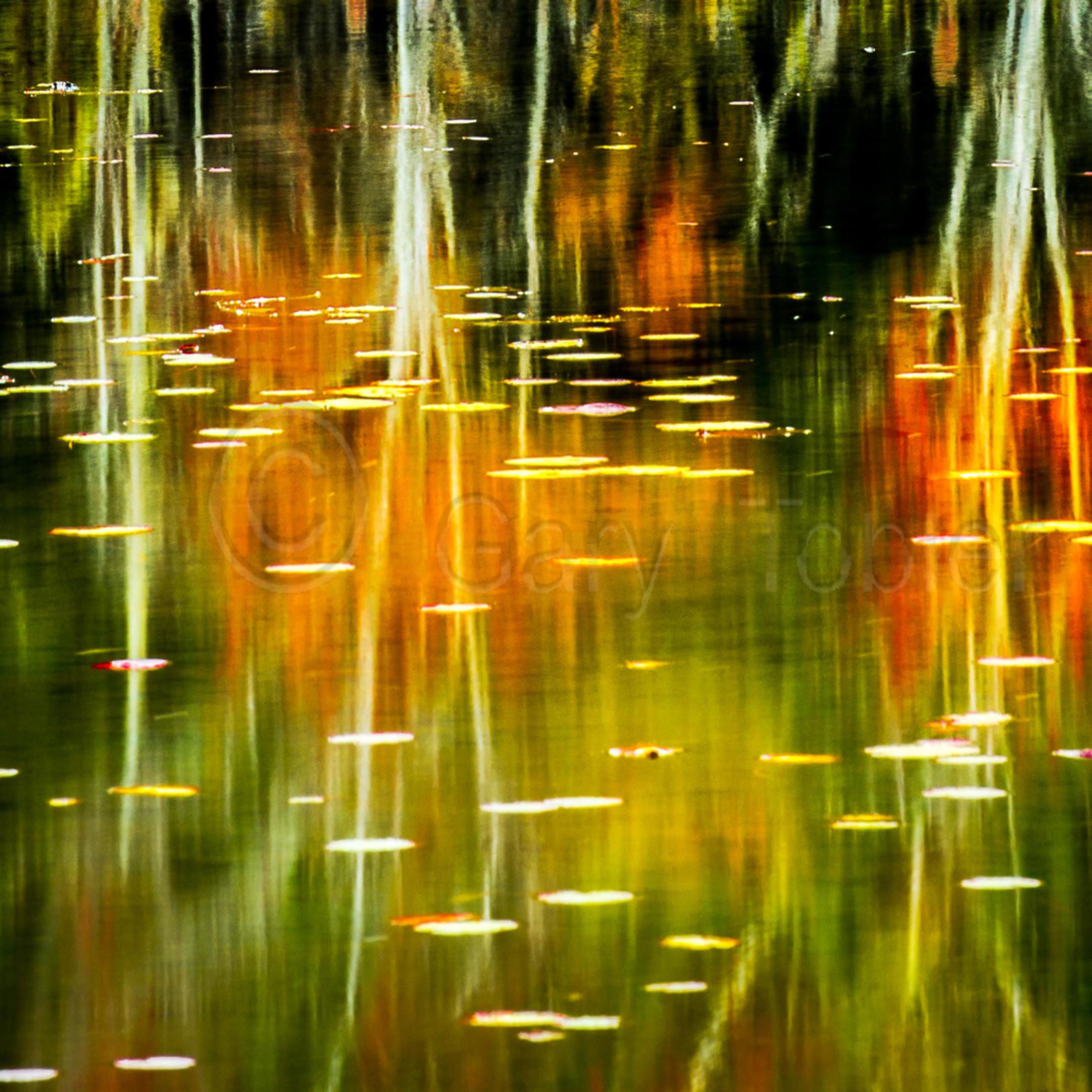 Vt reflections ydxvv3