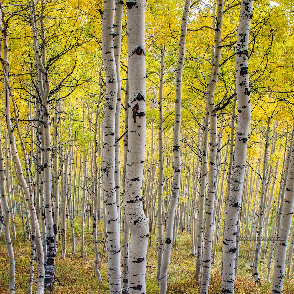 Colorado photos dsc3013 mjwsp0