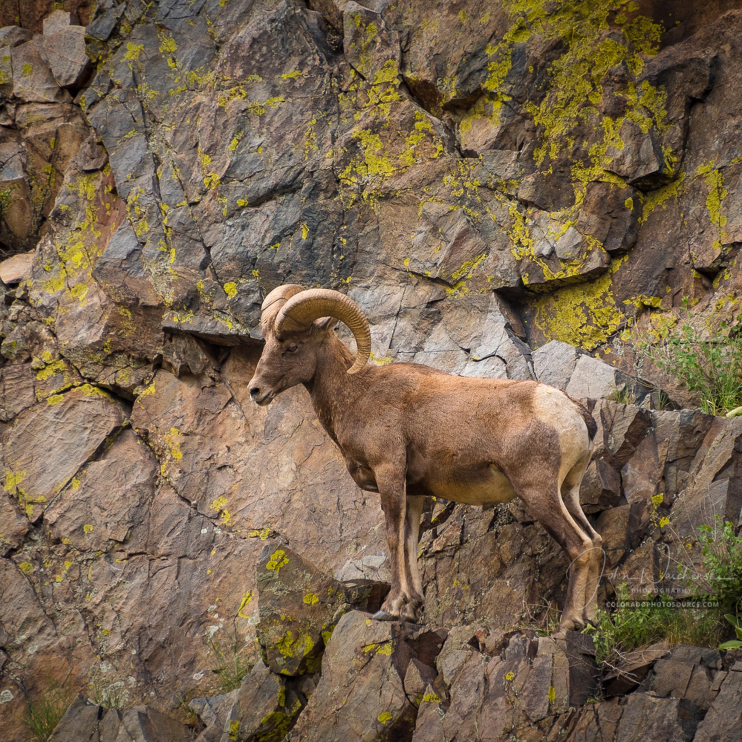 Colorado photosdsc 1019 2 eqmgkf