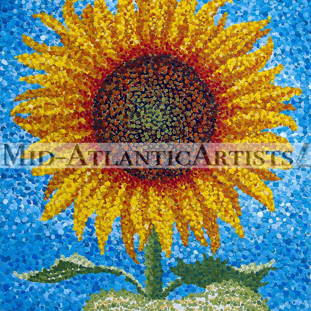 Sms 029 solitary sunflower ggckm7