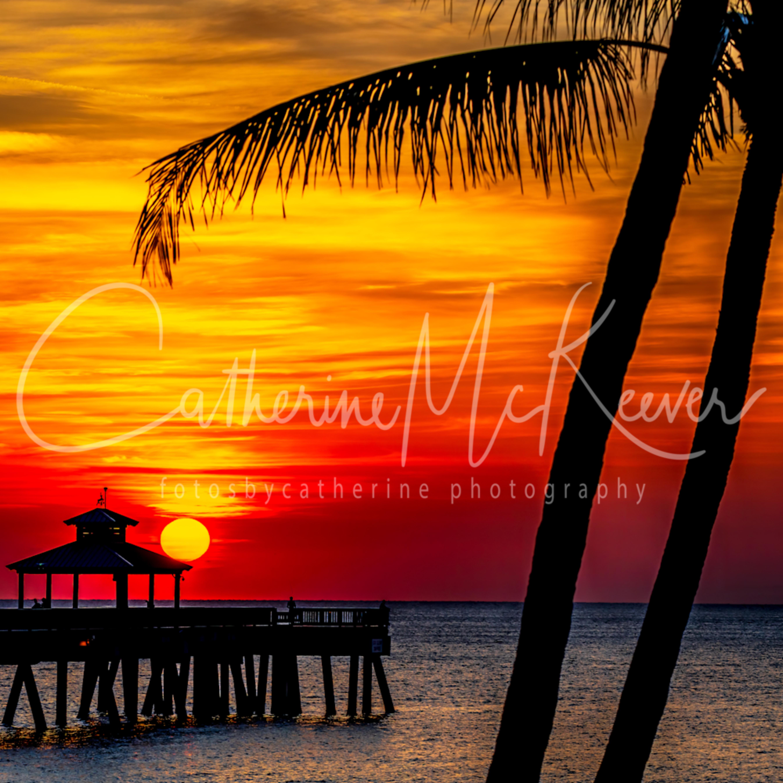 Tropical dawn uwmtbl