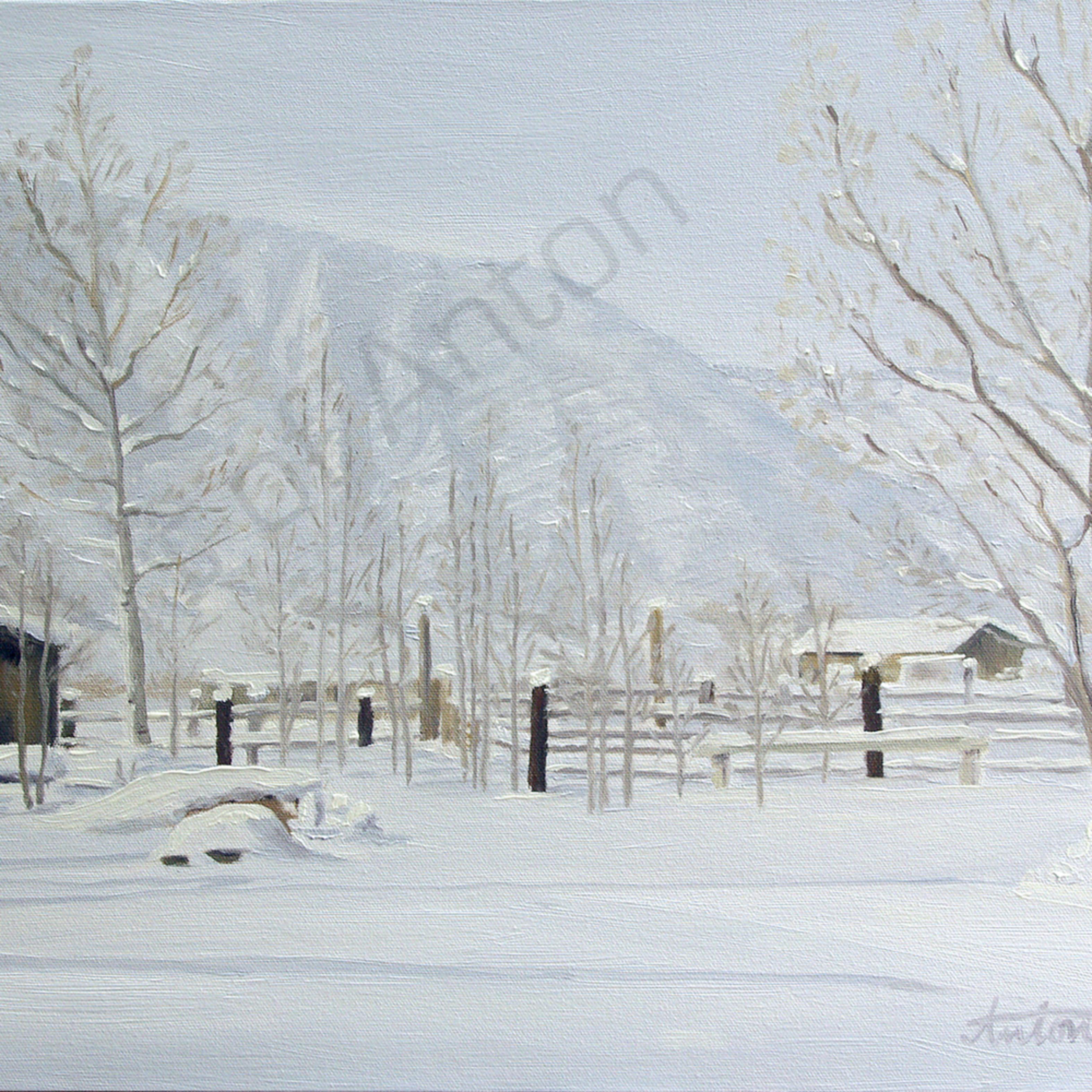 Winteryard dwcplj