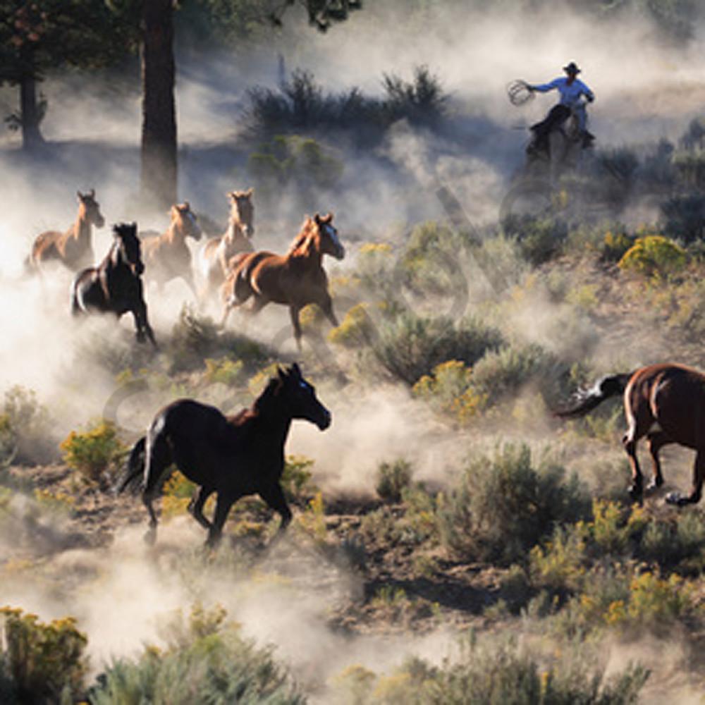 Watson ranch2 a5cnaf