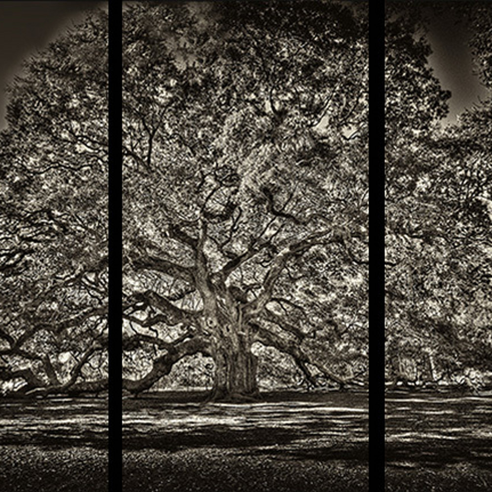 Angel oak sepia trip tych   black border e4tnez