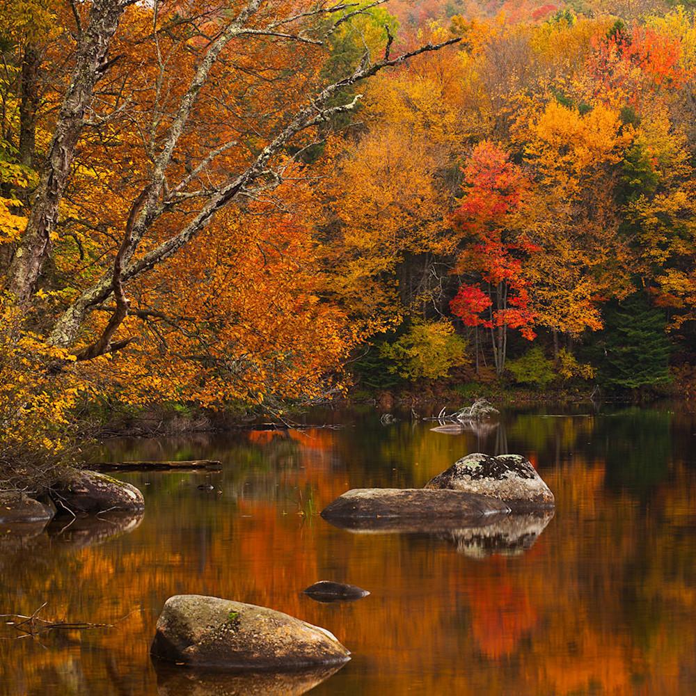 Autumnpond siefqo
