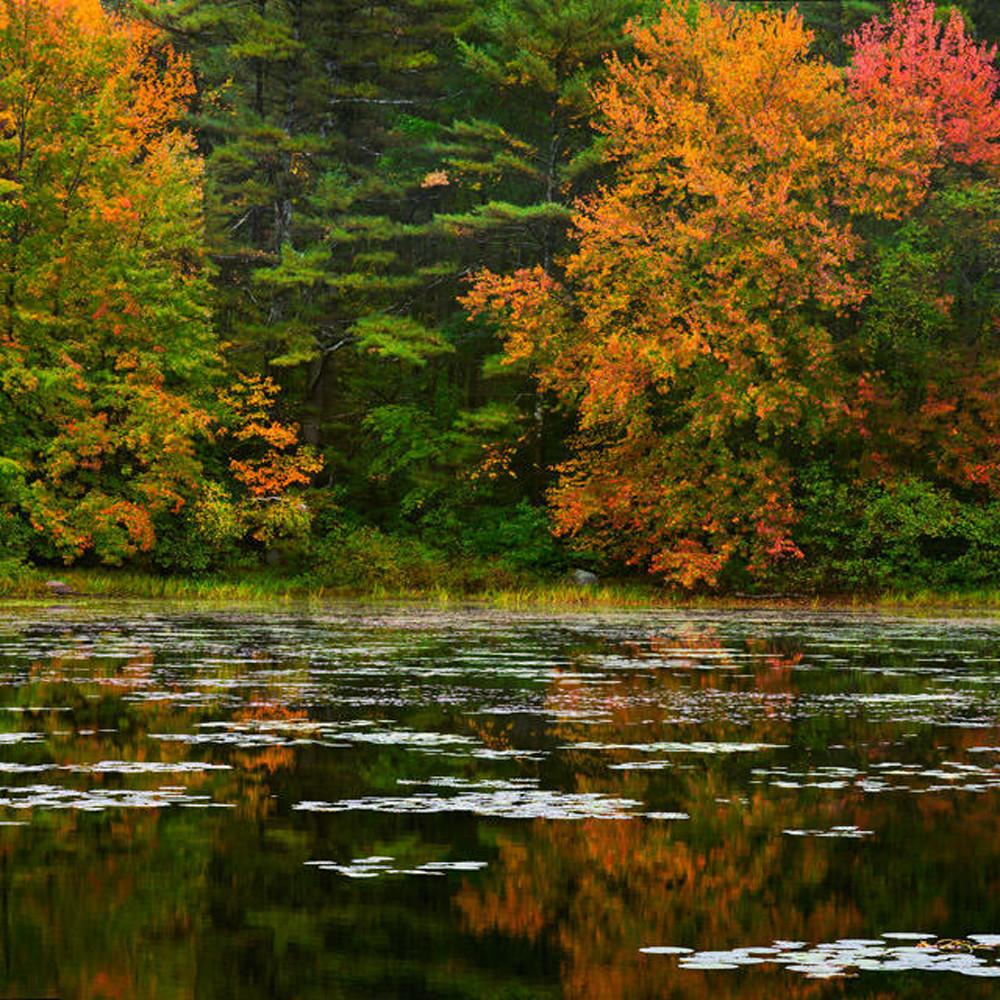 Autumnreflection fq8ddt