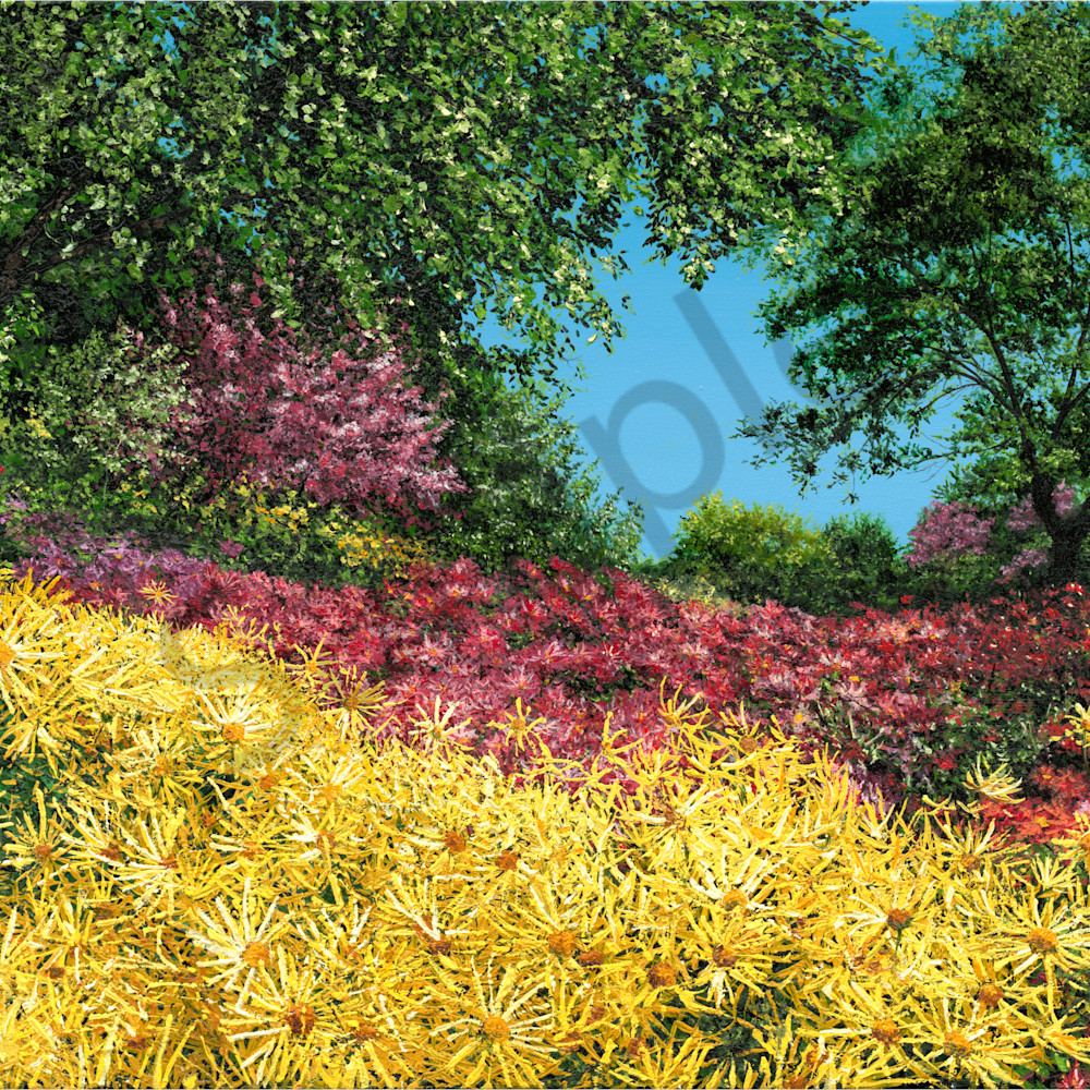 Joy of yellowhighres lqhpbb