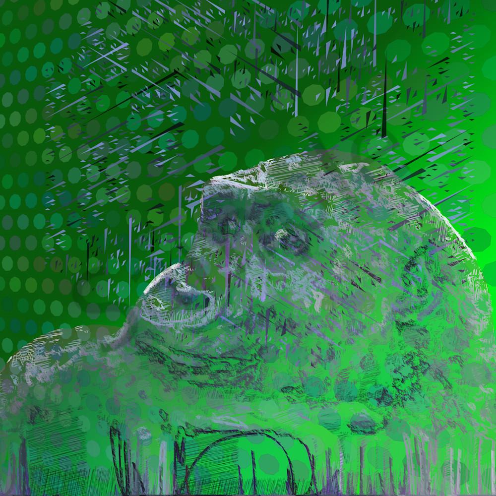 Gorilla27110 111949 3 2 1 ocvjju
