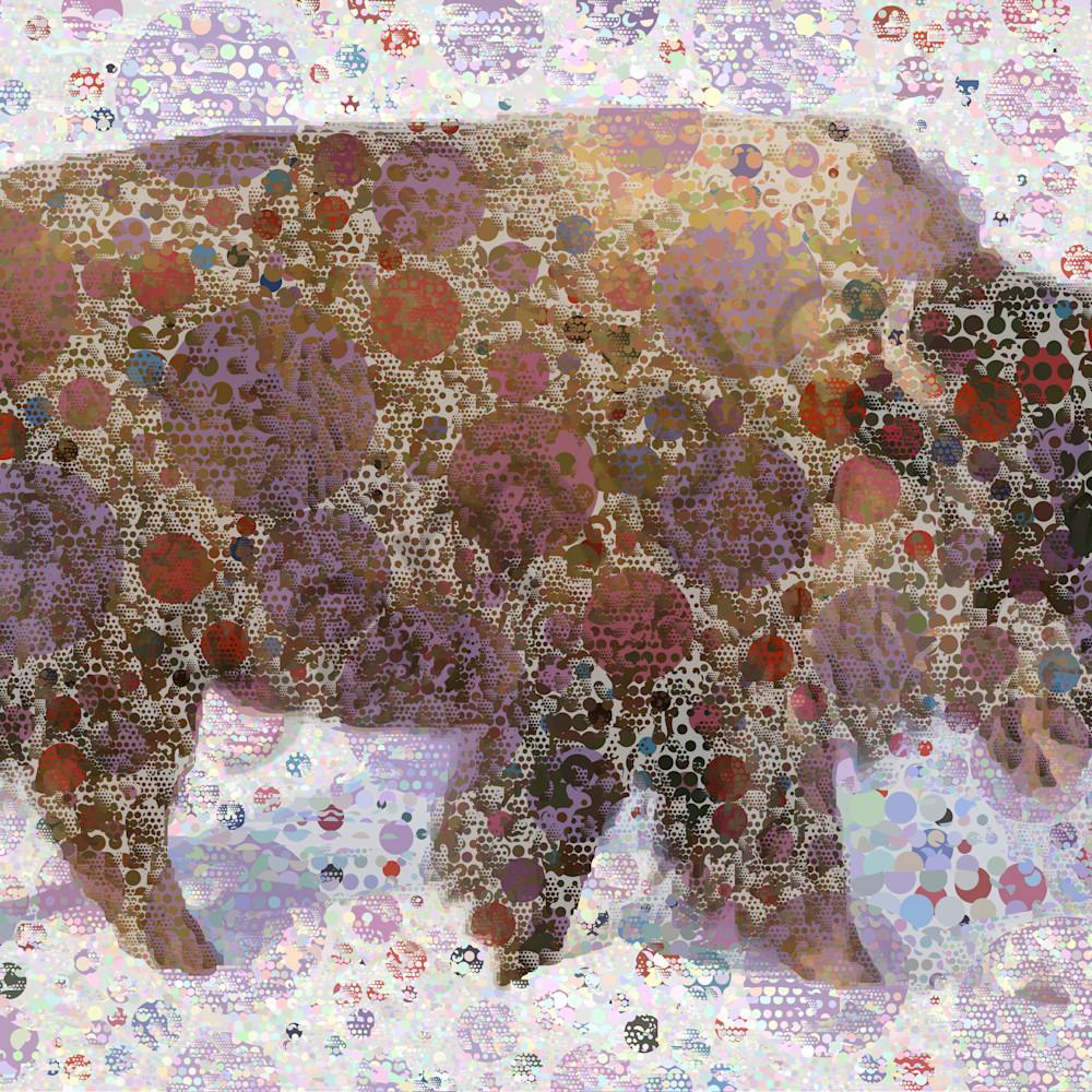 Buffalo q5ovnb