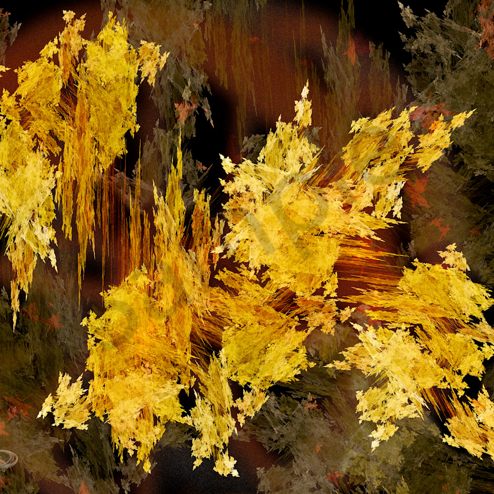 Cfreund goldrush 26.667x20 nogjeb