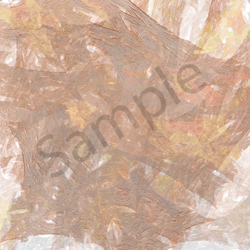 Cfreund charredimpressions 31x31 hxkd2z