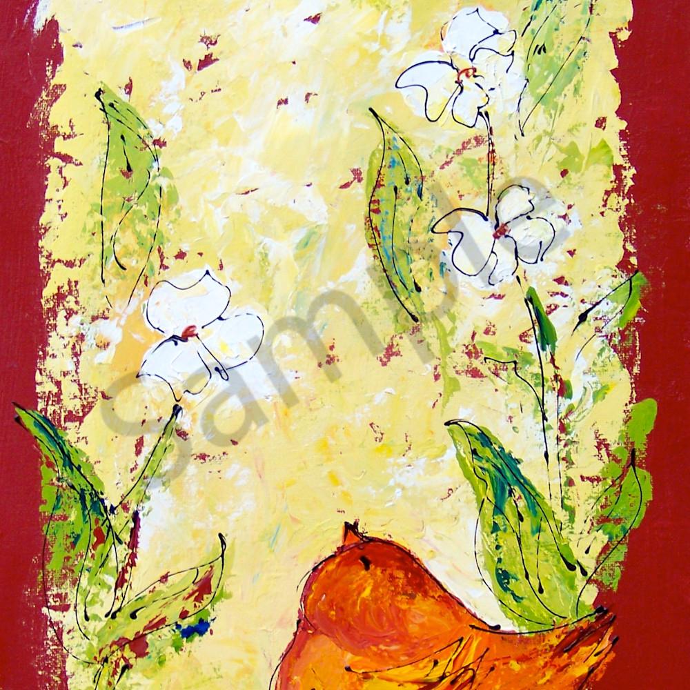 Tall chubby orange bird flowers nf2eeu