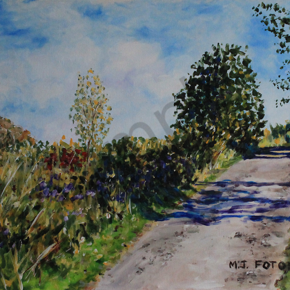 Road with shadows by joan fotopoulos lpsesa