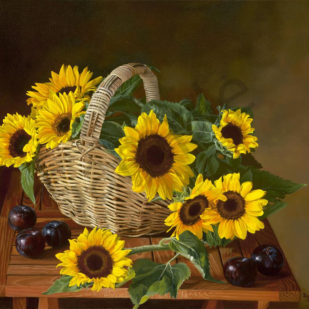 Jcan 011 sunflowers onppqf