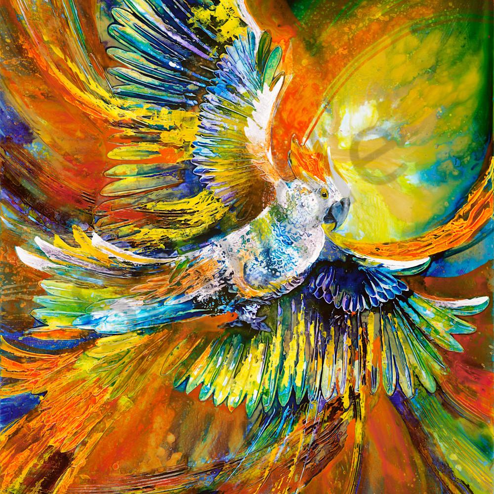 Dgil 023 sulphur crested cockatoo dejkuh