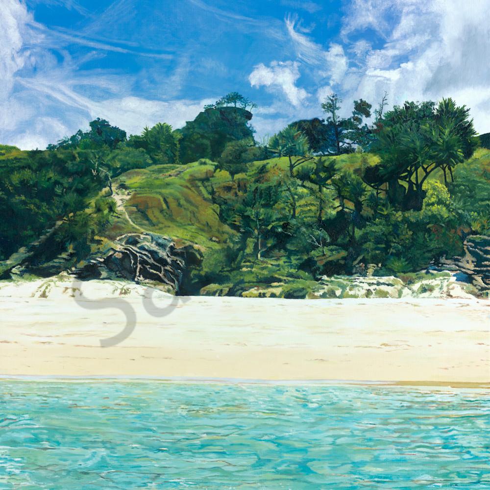 C hamilton 002 stradbroke shoreline ylnhmg