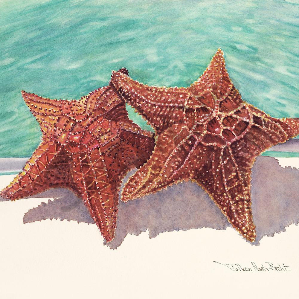 2 two stars pt0mzd