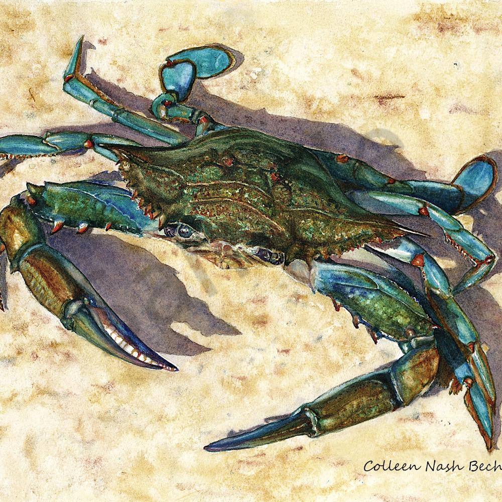 2 blue crab.11x14. bkrbng