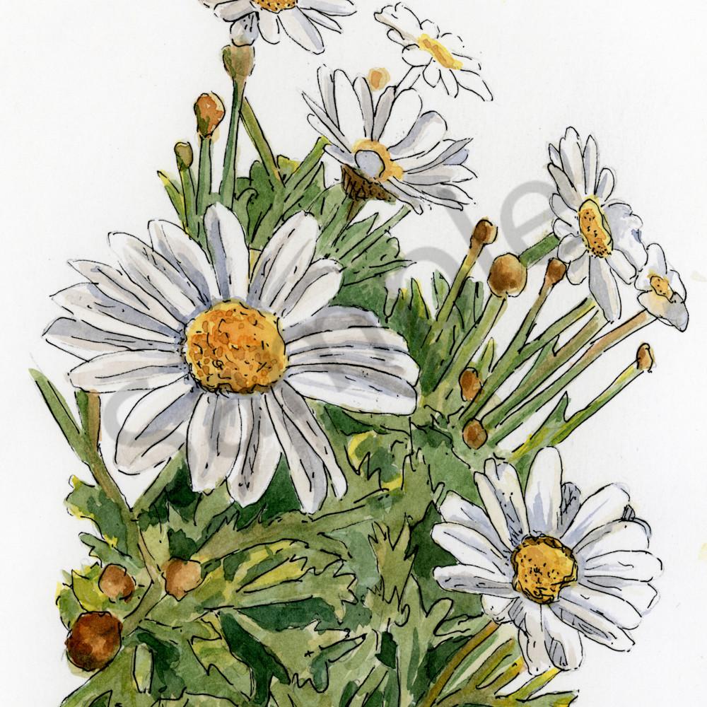 April daisy j865ap