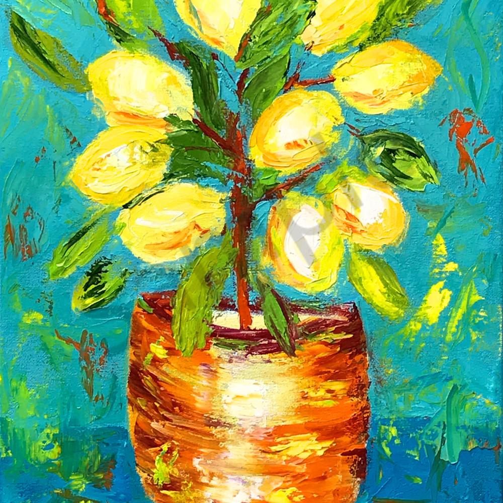 Suzanne s lemons hi rz iy6me6