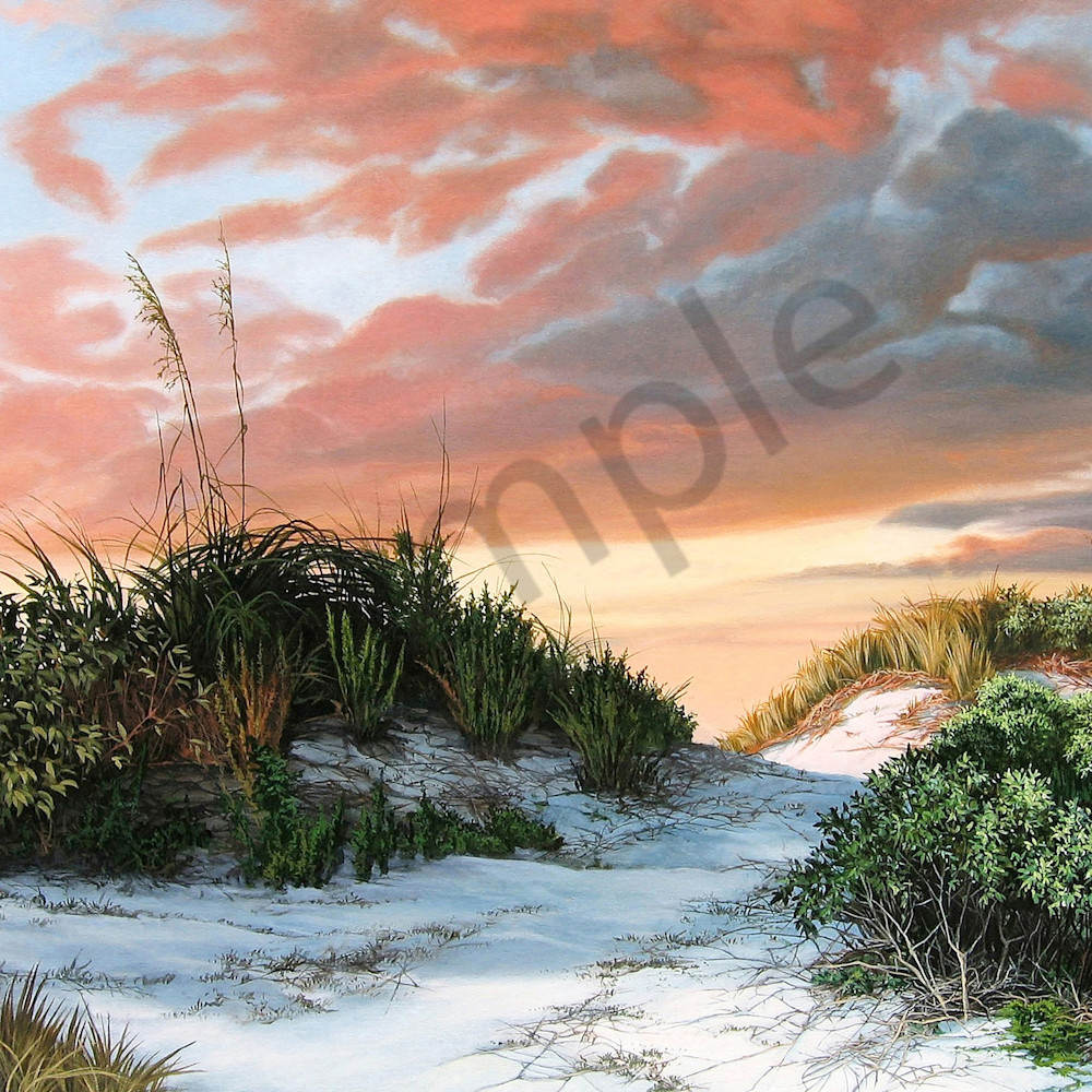 Dunes with sea oats print file rggq5r