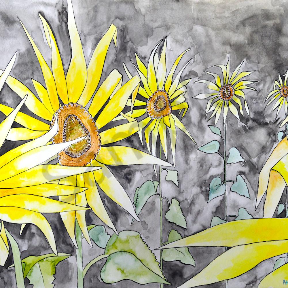 Sunflower3 de8zug