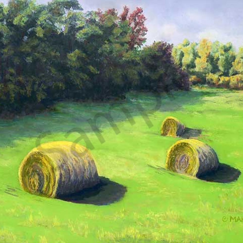Morning hay bpcsjh
