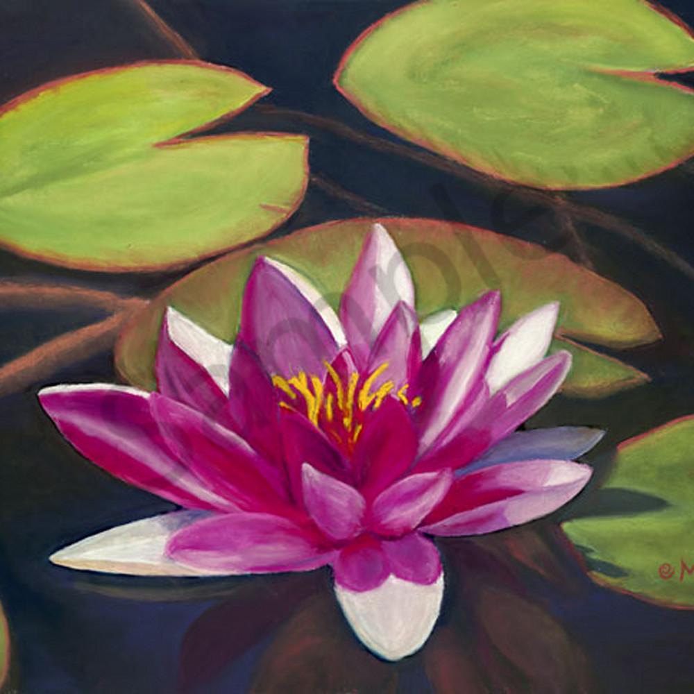 Lotus ki0jvk