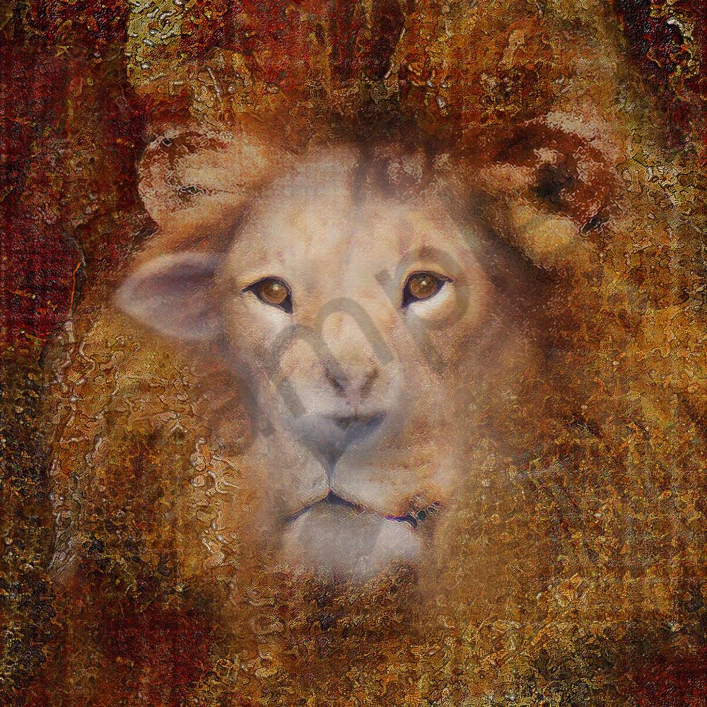 Lion lamb face by constance woods d0qcft