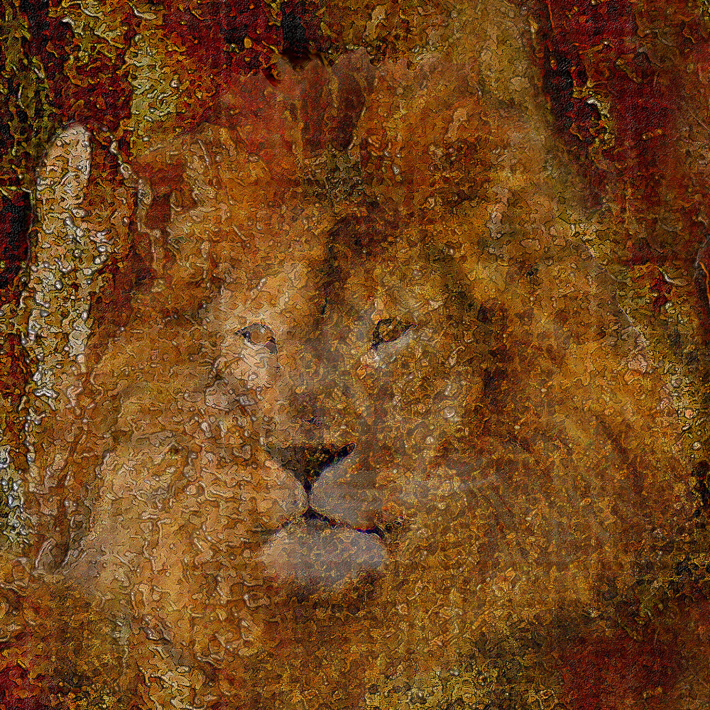 Lion of judah by constance woods obn2f4
