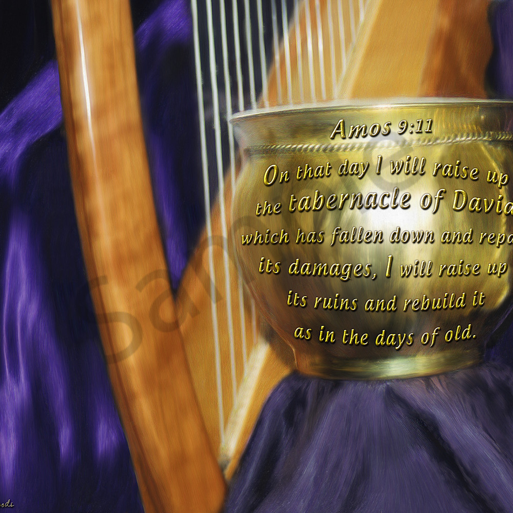 Tabernacle of david by constance woods xnh5bp