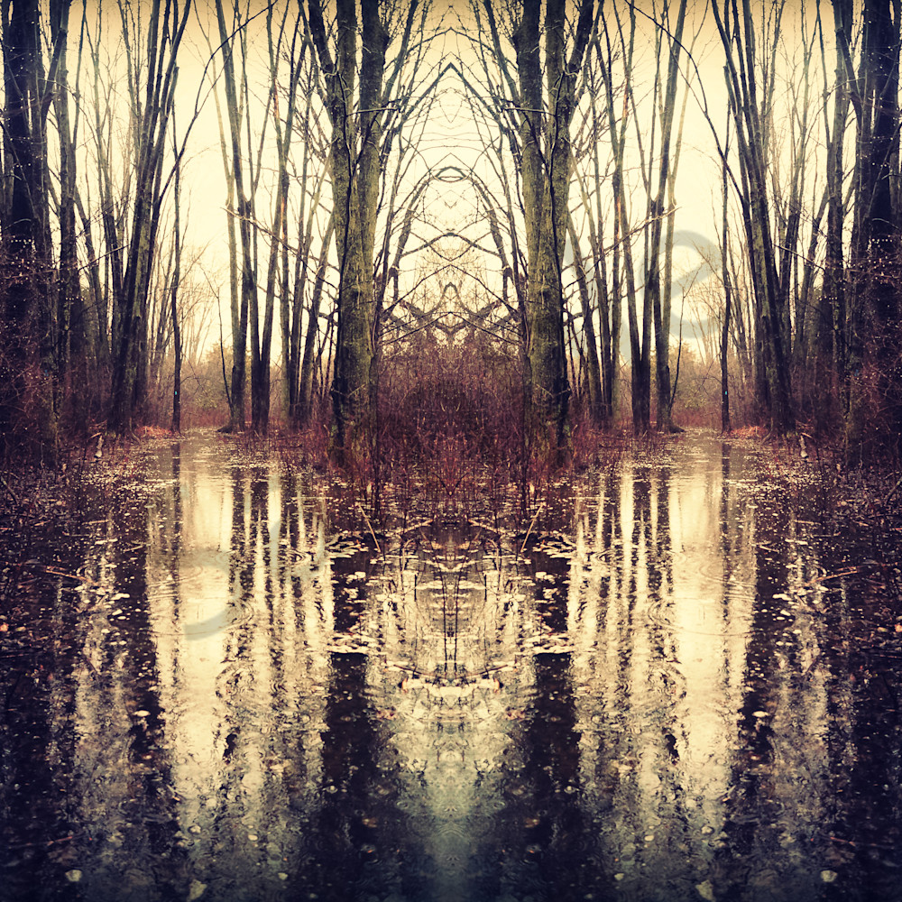 Water reflections x6exoe
