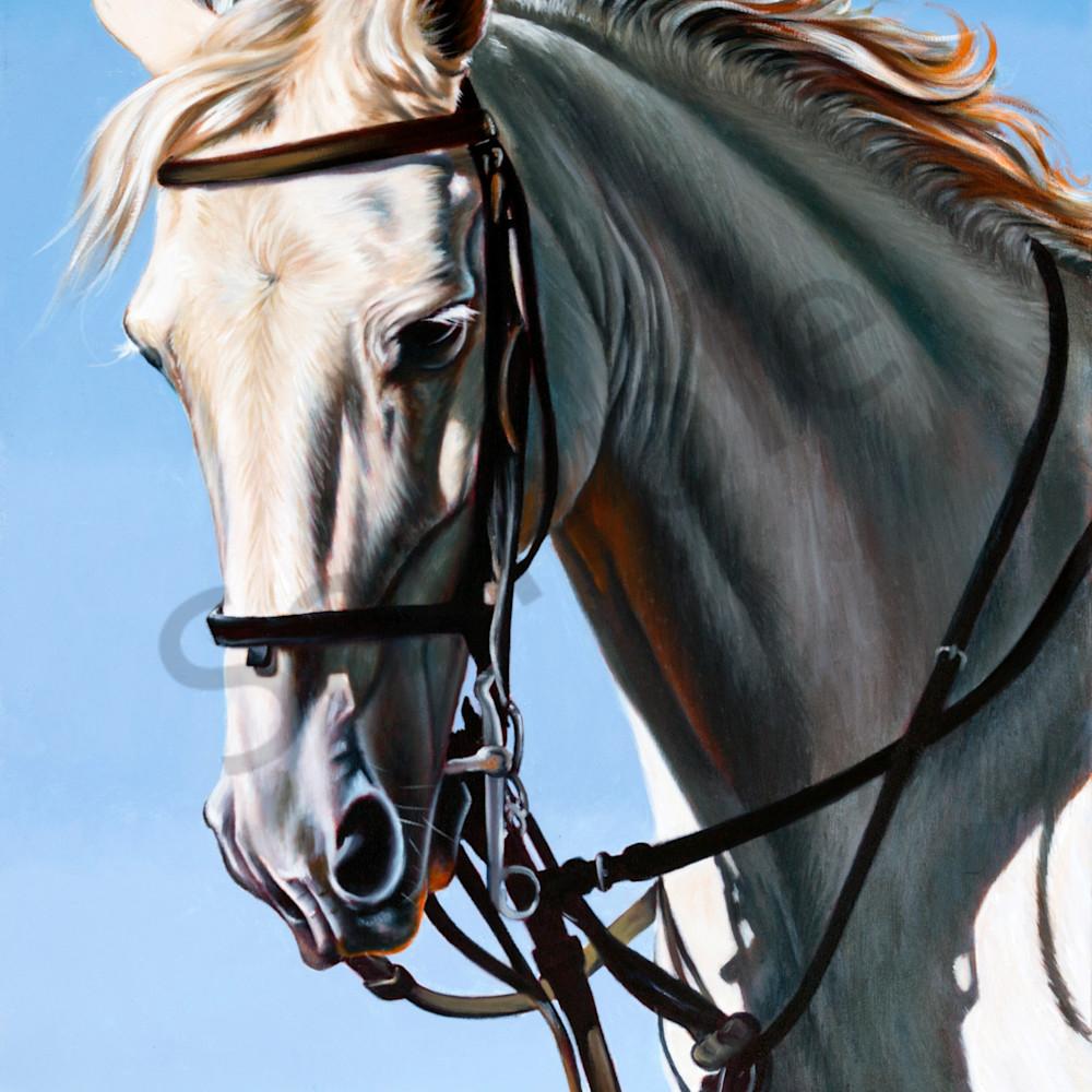 Running with horses by ilse kleyn cdoyoh