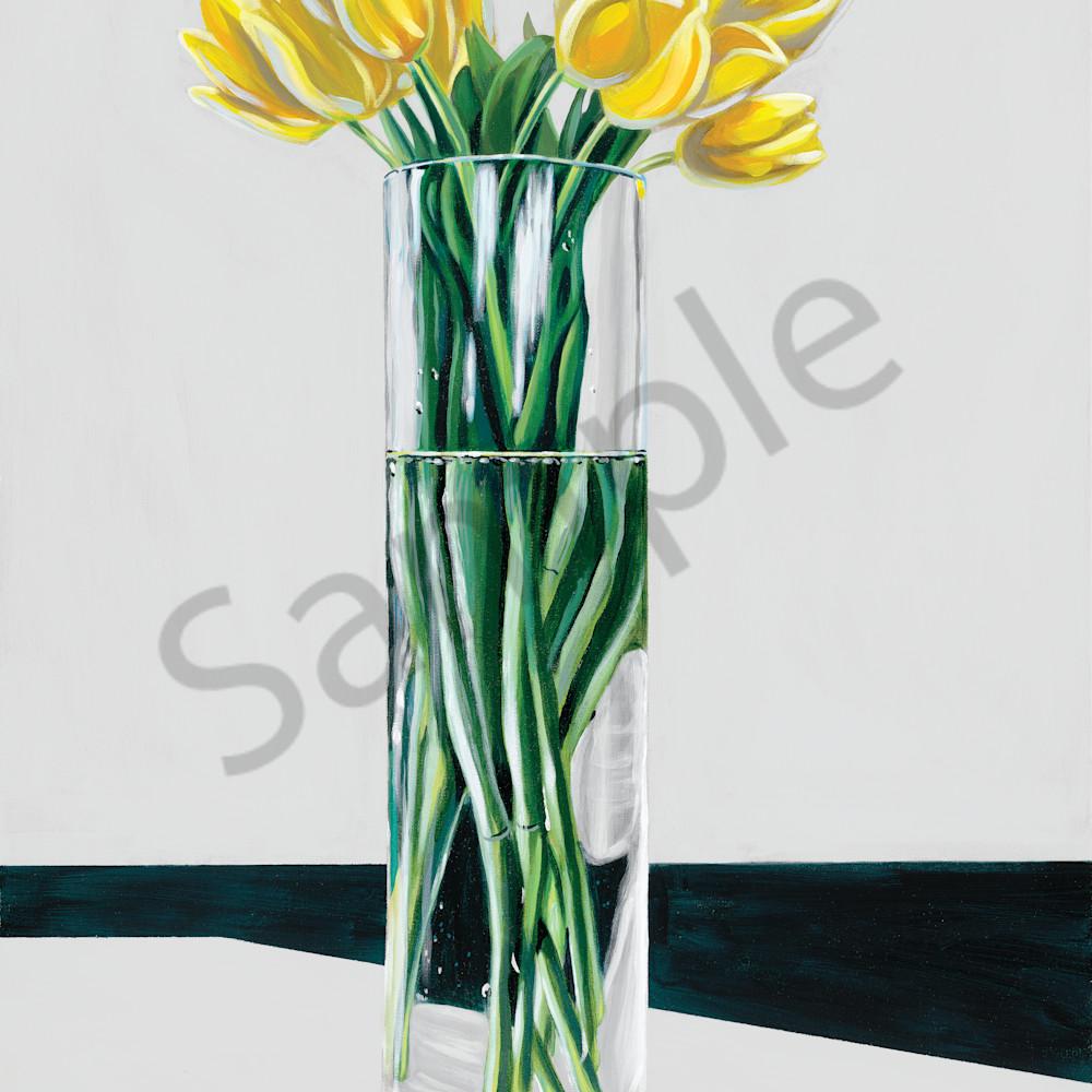 Asf   yellow tulips wpgvmv