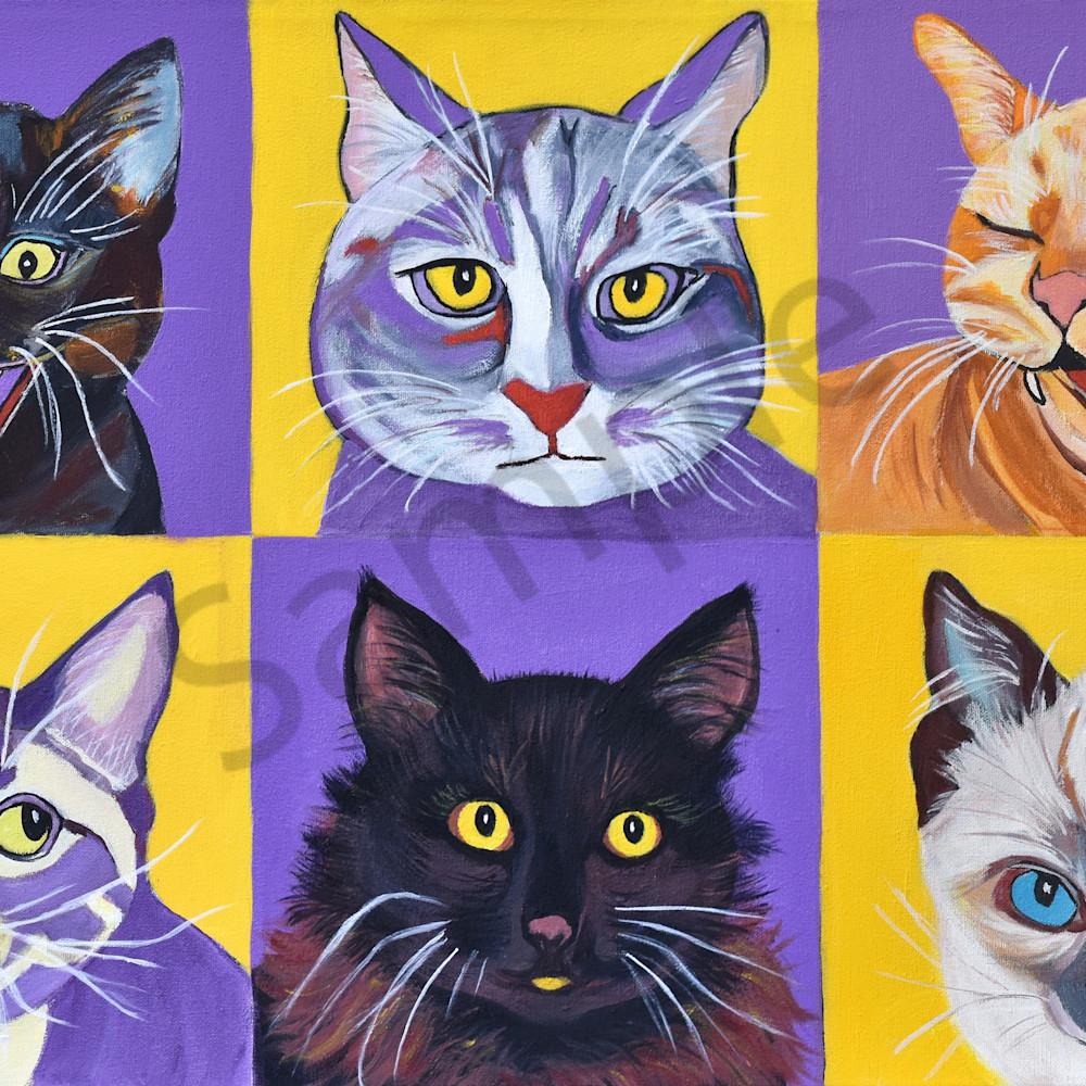 Lenora s cats   prof photo b2egsw