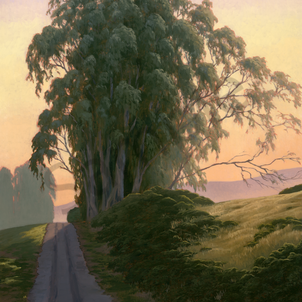 Breathtaking eucalyptus qmksio