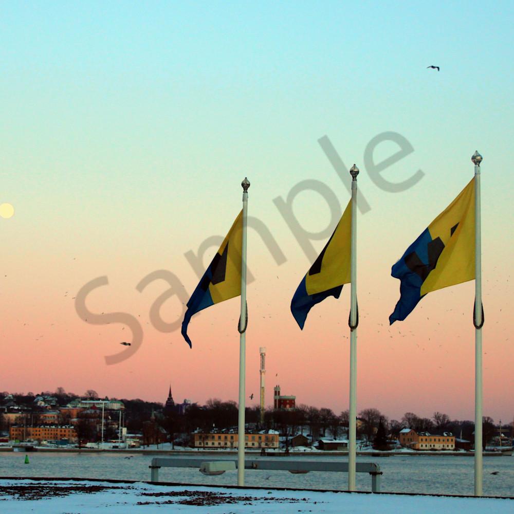 Fullmoonseagullsandflagsstockholmfeb2012 y99k3m