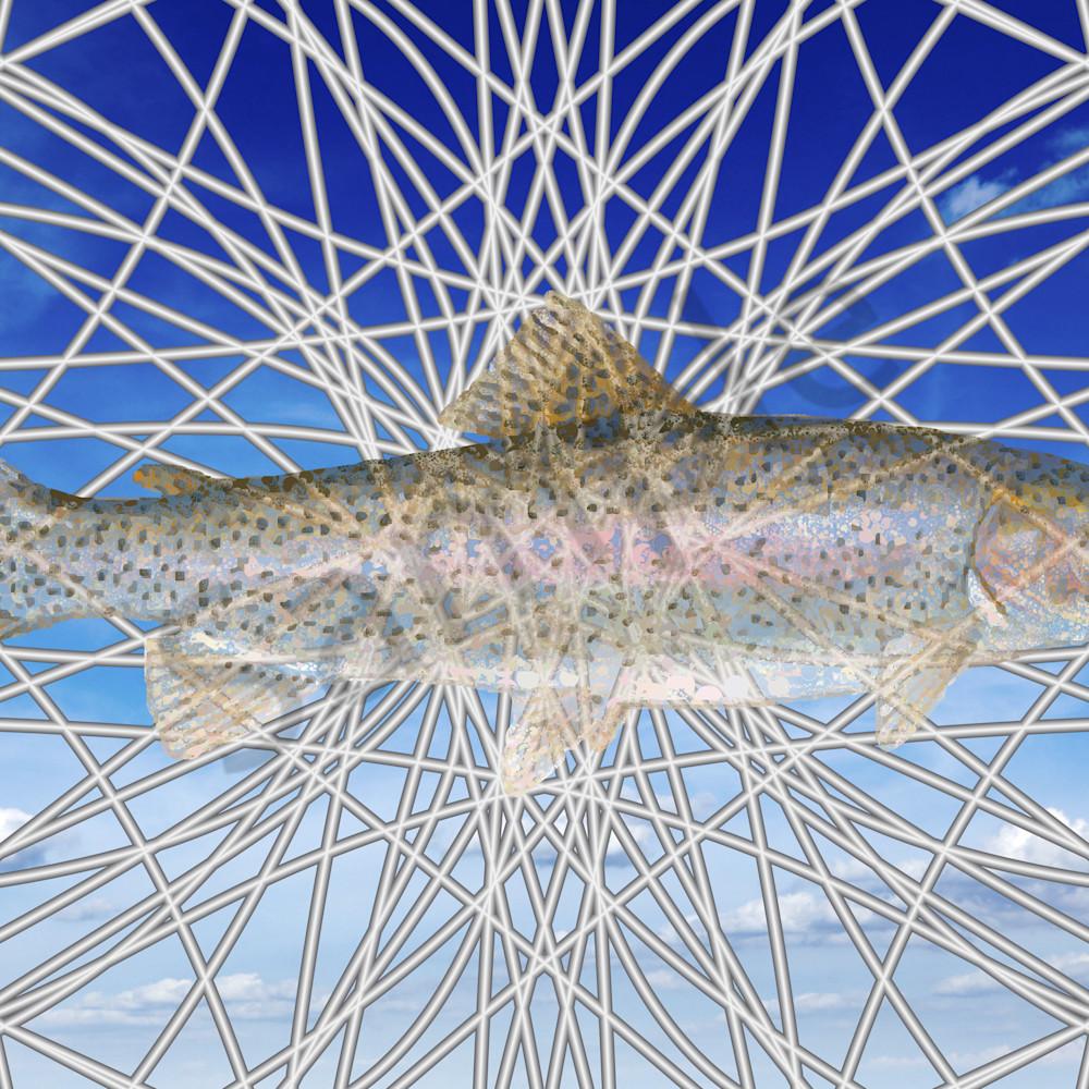 Peter mcclard   trout7318 12917 2 cwmi5s