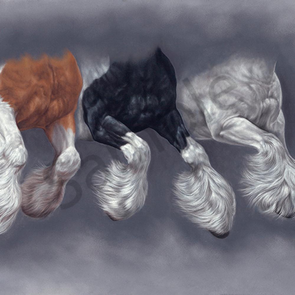Brotherhood of feathers clgjrj