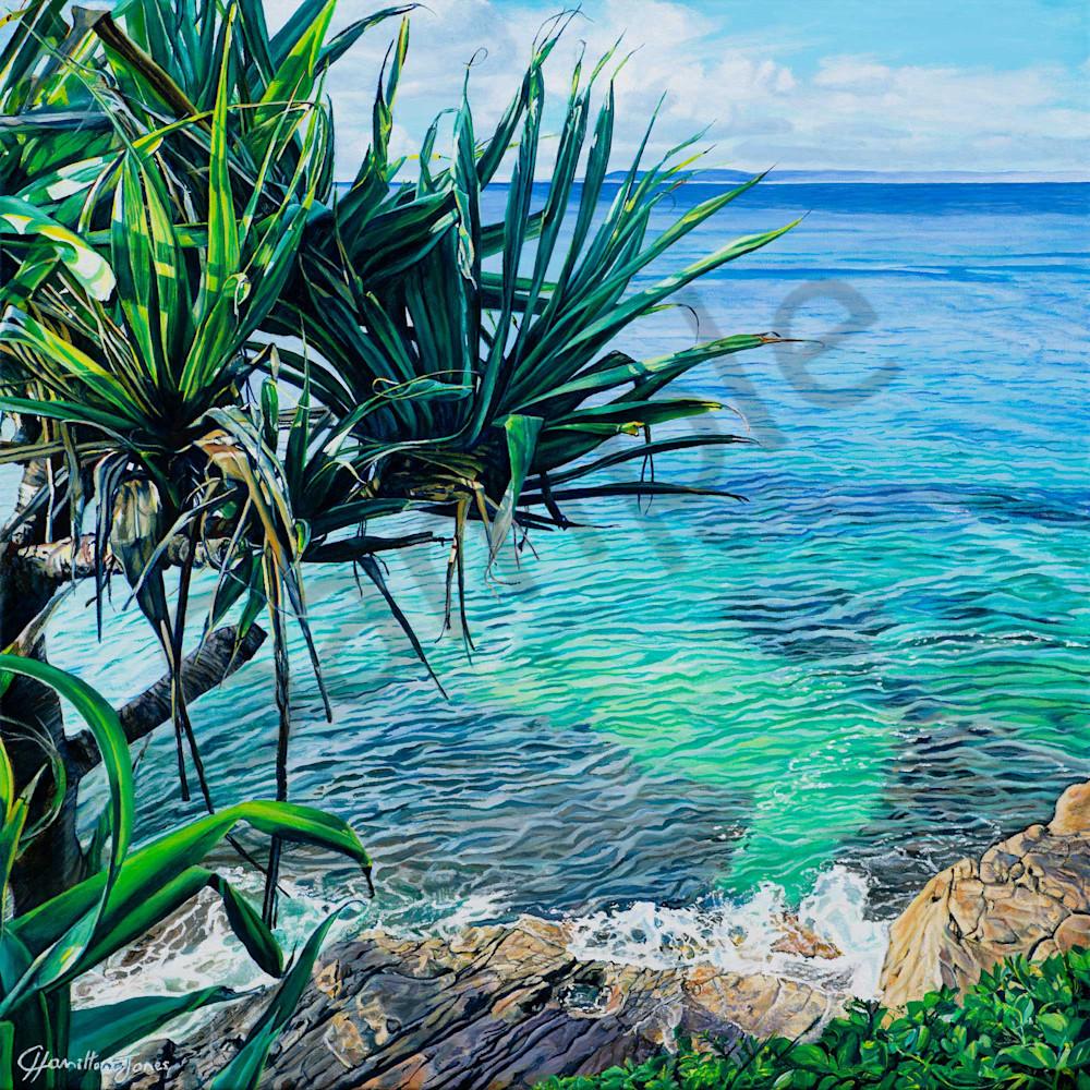 C hamilton 007 pandanus view ffiqxq