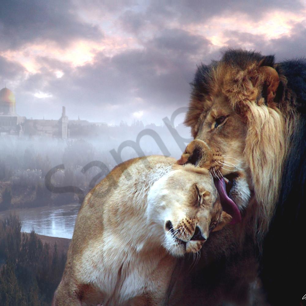 Messiah and israel by bill stephens zqsgo5