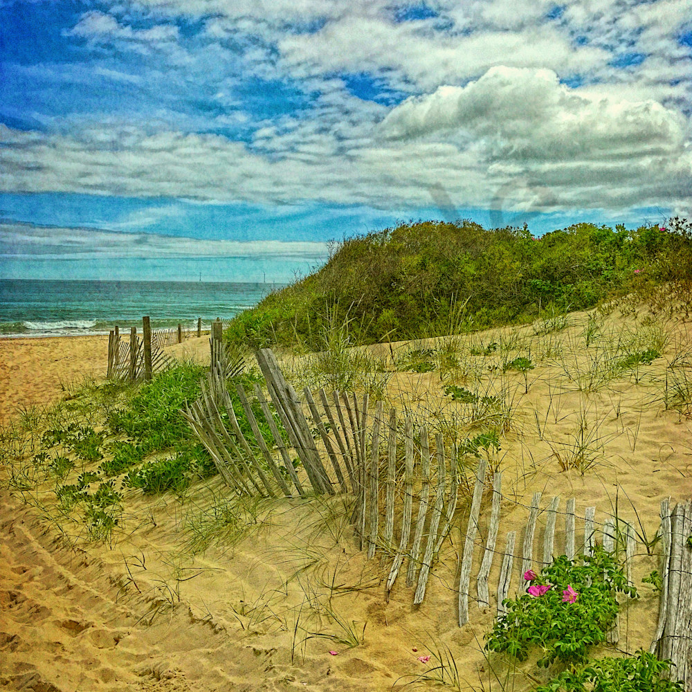 Fence in the dunes website uyaphl