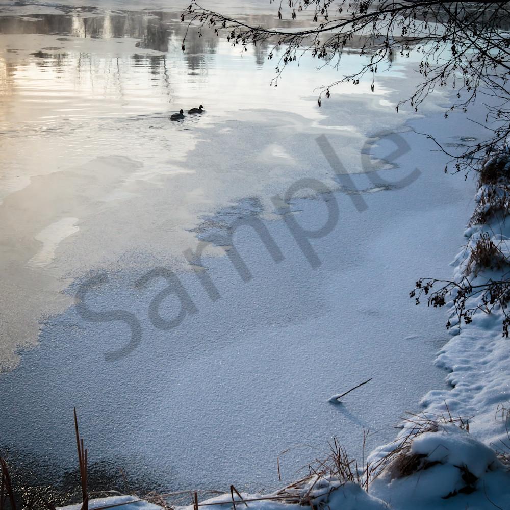 Frozenriver ducks oldmill nlab0d