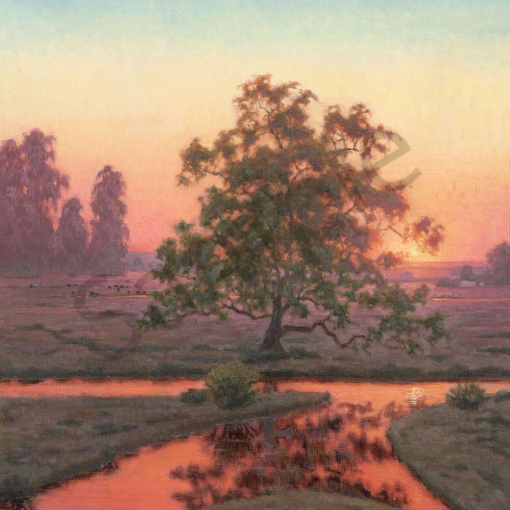 Amber sunset glow segnxn