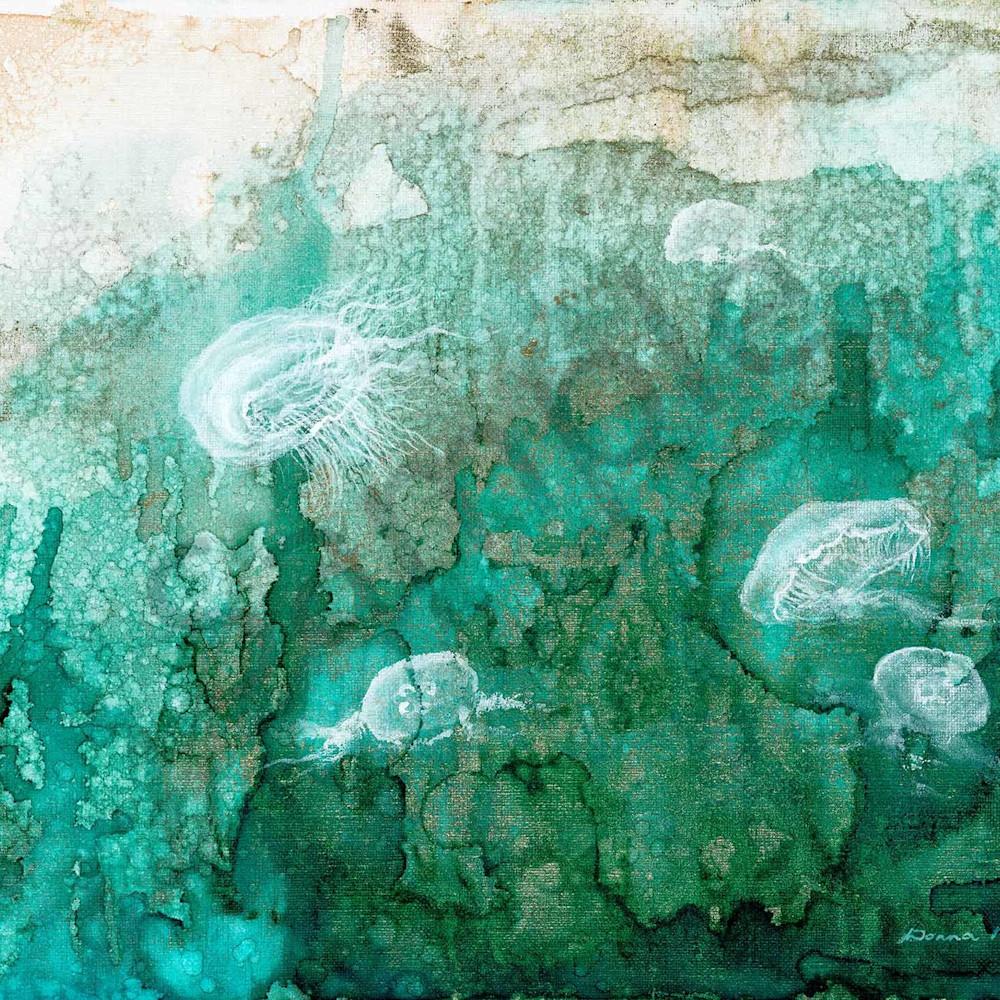 Donna maloney 002 moon jellyfish 2000px d8lmgp